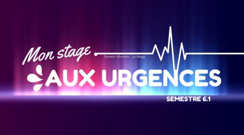 Stage du semestre 6.1 : le Service d'Accueil des Urgences