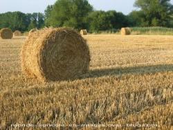 Les paysages agricoles en France cycle 3