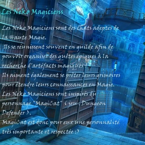 Neko Magicien