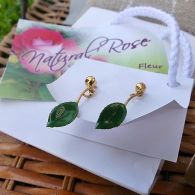 Les Journées de la Rose 2017 : achats, cadeaux et trouvailles...