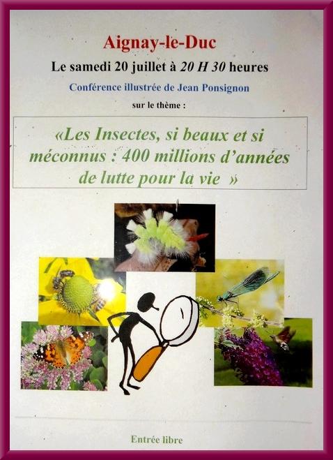 """""""Les insectes"""", une conférence passionnante de Jean Ponsignon, à Aignay le Duc"""