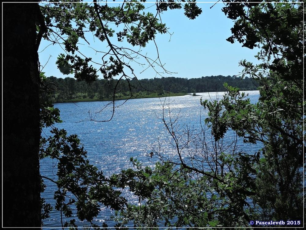 Autour du lac du Bousquey - Juin 2015 - 5/6