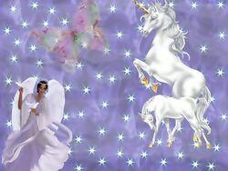 carnet de naissance licorne 21