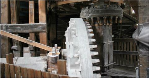 Pays-Bas / Les moulins de Zaanse Schans