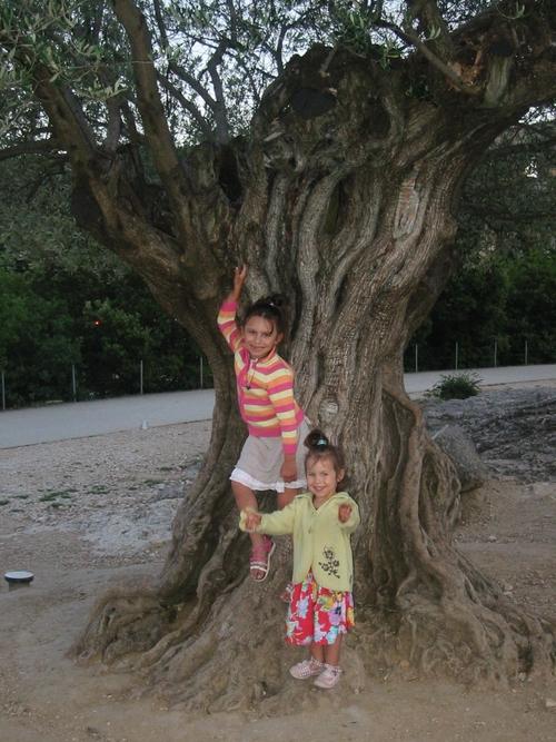 Participation sur le thème arbre pour khanel