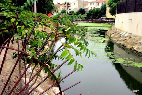 Torreilles : découverte du vieux village ...