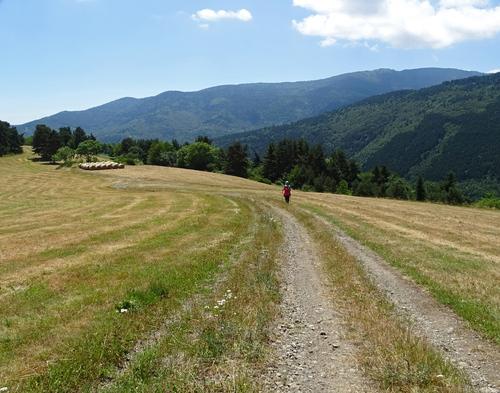 La Serre de Monfort (1.141 m) depuis Montfort-sur-Boulzane (720 m)