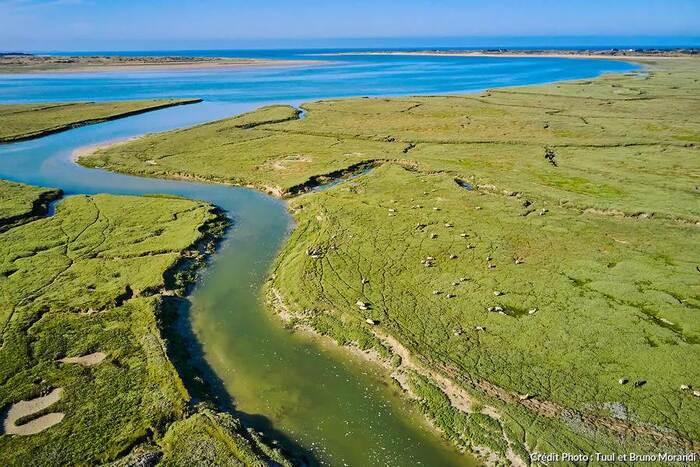 La Côte des havres, sauvage par nature
