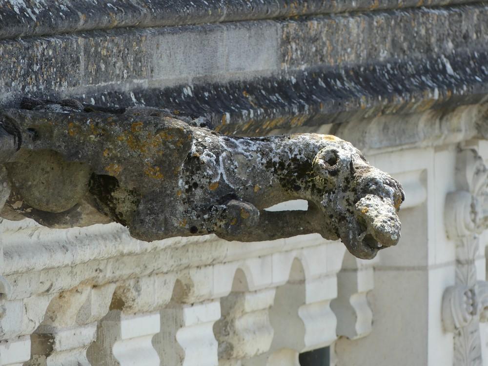 Le Château Royal d'Amboise : les gargouilles...