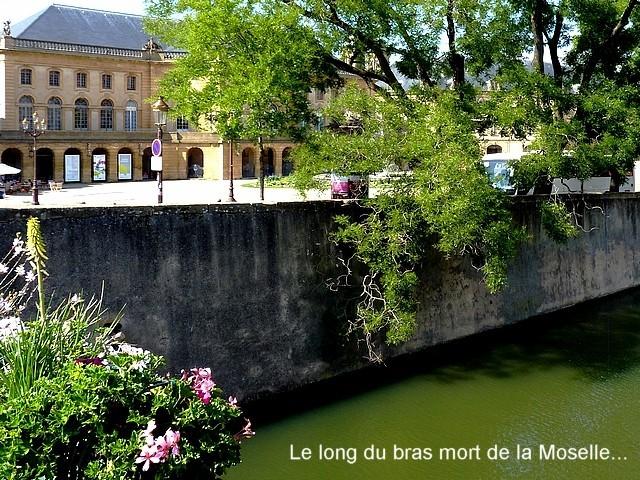 Marc de Metz 96