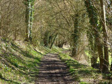 Le chemin des 3 calvaires