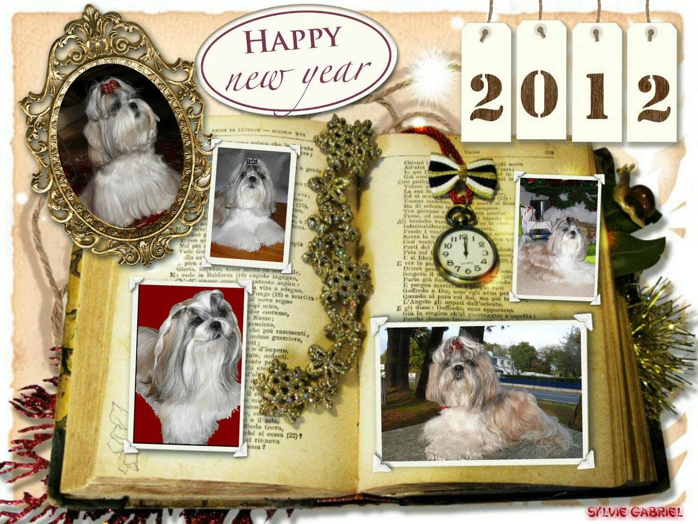 collage_2011-12-29_18-54-51.p
