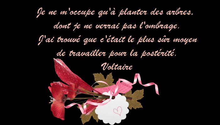 Carolane