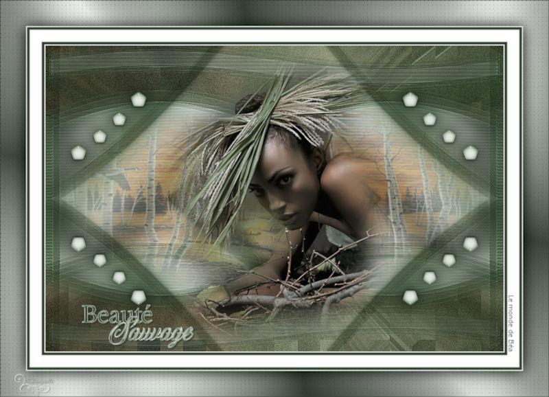 *** Beauté Sauvage ***