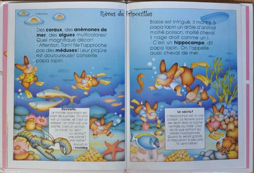 Une série de livres de mon enfance: Les lapinous ...  découvrent...