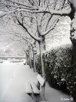 neige 雪が降っています