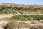 Souvenirs de mes précédents voyages en ALGERIE