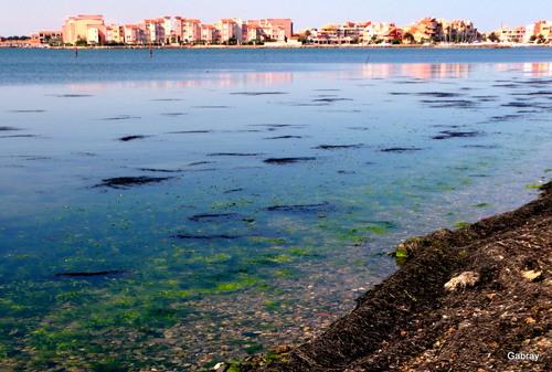 La Presqu'île au Barcarès