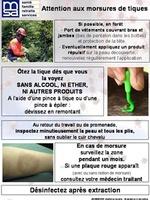 La maladie de Lyme (20)