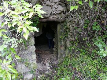 L'entrée de la cave voûtée