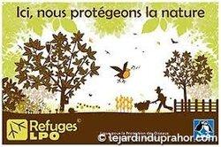 La pépinière écolo du Jardin du Prahor