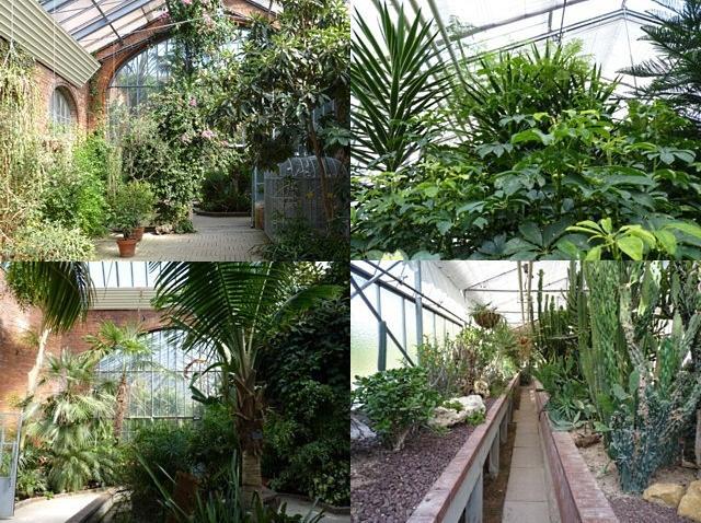Botanique de Metz 3 - 16 07 10