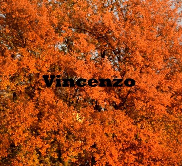 Decembre en orange 4
