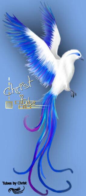 Oiseau Mythique