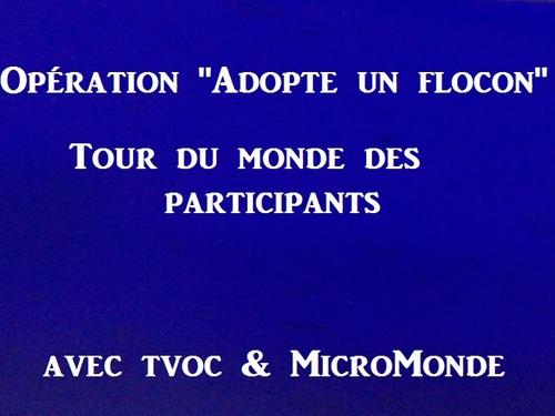 """Opération """" Adopte un flocon"""""""