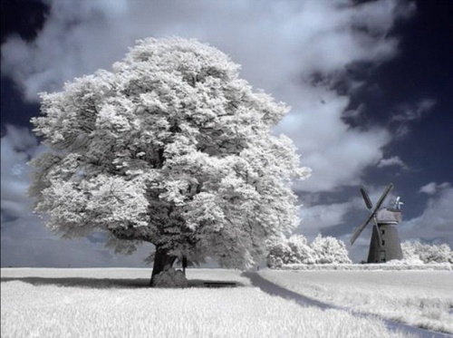 Poème d' hivers