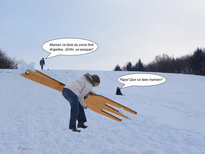 Snowfork [1024x768]-copie-1