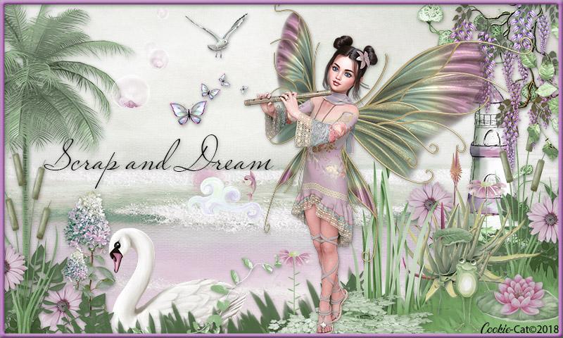 scrap and dream