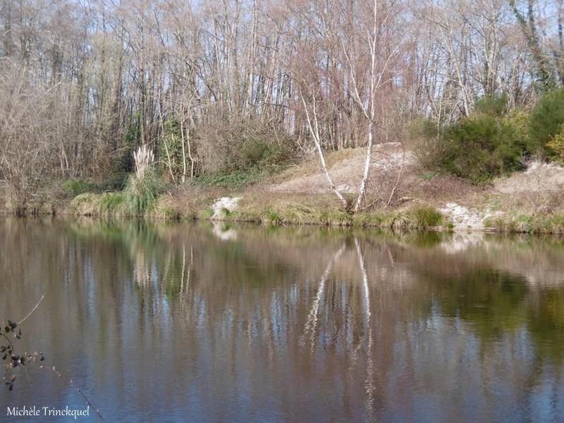 Une balade le long de La Palue, le 24 février (suite)....