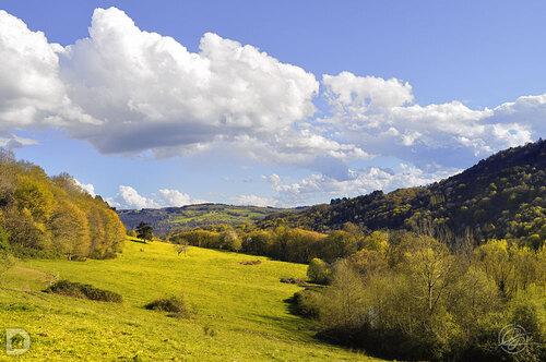 La verte vallée