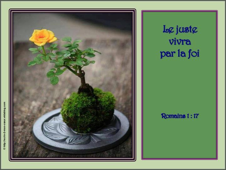 Le juste vivra par la foi - Romains 1 : 17