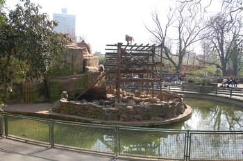 zoo cologne d50 2012 166