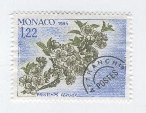 monaco-printemps-cerisier.jpg