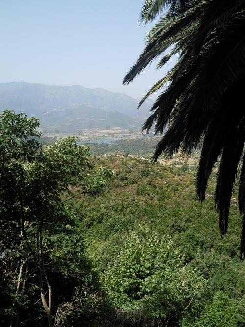 Photo1914-Corsica