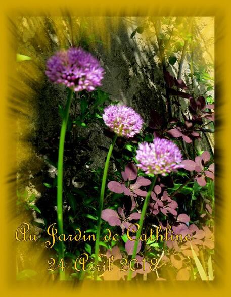 Au Jardin et Avec la lune du 11 au 20 mai