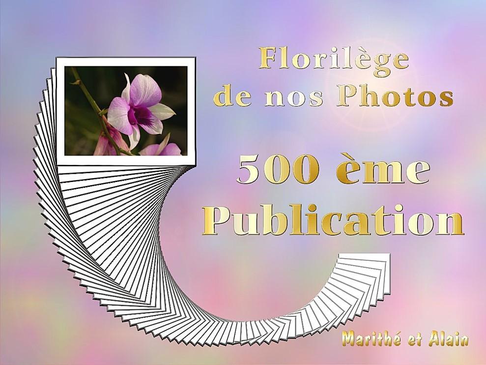 Florilege-500.jpg