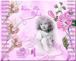 Cartes des Mamies 1