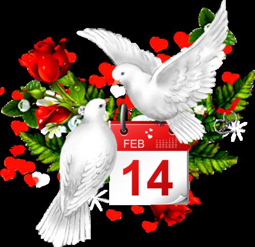 Saint-Valentin  (10)