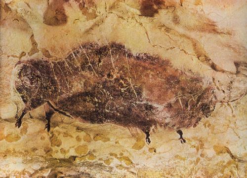 Photos des gravures préhistoriques de la grotte de Lascaux