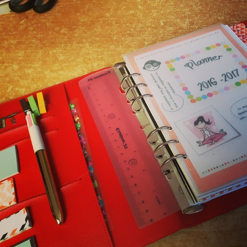 Organisation : Filofax & co' #2