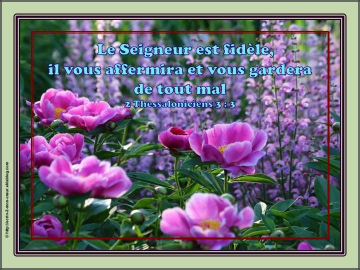 Le Seigneur est fidèle, il vous affermira et vous gardera - 2 Thessaloniciens 3 : 3