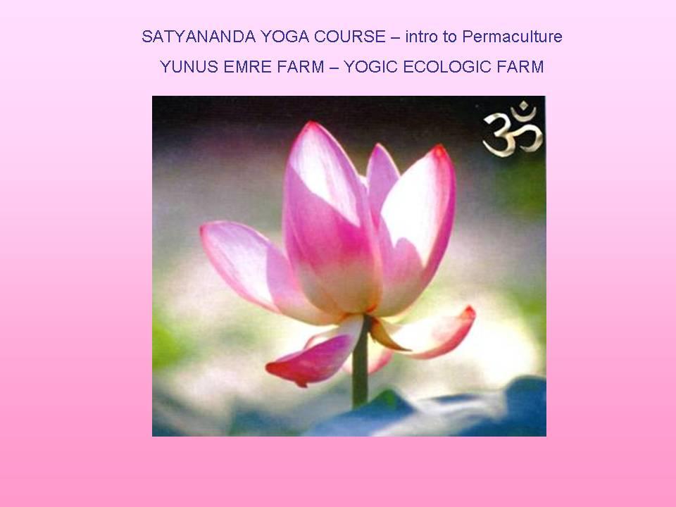 SATYANADA YOGA COURSE with Sn ATMATATTWANANDA