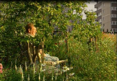 Jeu selon Darius : Autour de nos jardins
