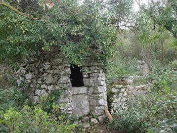 Le puits des Olivières