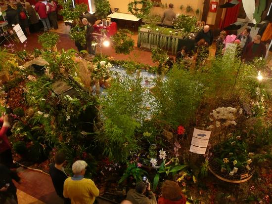 2013-Expo orchid Pont sainte Marie 085