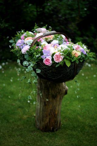 Abondance de roses à Gerberoy